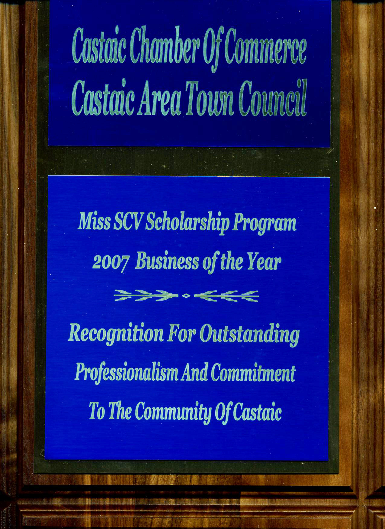 Award from Castaic Town Council 2008048
